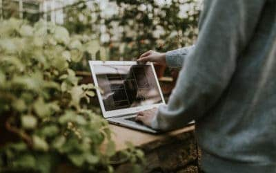 Small Business Web Design: Tips for Your Landscaping Business Website
